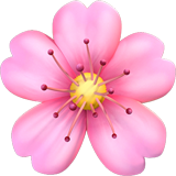 Cherry Blossom ios/apple emoji