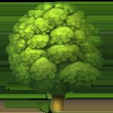 Deciduous Tree ios/apple emoji