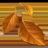 Fallen Leaf ios/apple emoji