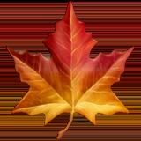 Maple Leaf ios emoji