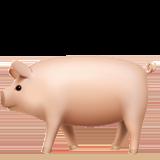 Pig ios emoji