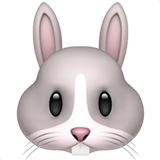 Rabbit Face ios/apple emoji