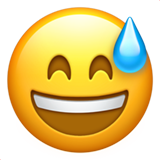 Smiling Face With Open Mouth And Cold Sweat ios/apple emoji