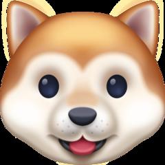 Dog Face facebook emoji
