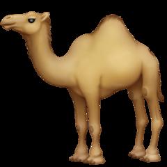 Dromedary Camel facebook emoji