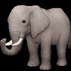 Elephant facebook emoji