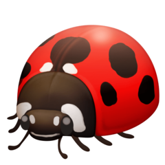Lady Beetle facebook emoji