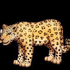 Leopard facebook emoji