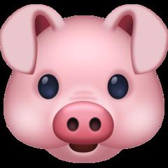 Pig Face facebook emoji