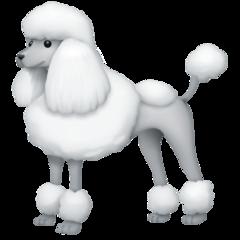 Poodle facebook emoji