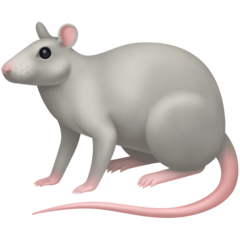 Rat facebook emoji
