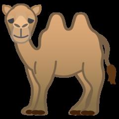 Bactrian Camel google emoji