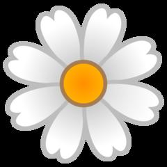 Blossom google emoji