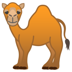 Dromedary Camel google emoji