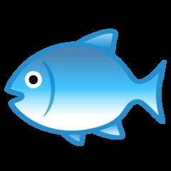 Fish google emoji