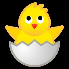 Hatching Chick google emoji