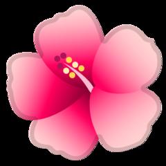 Hibiscus google emoji