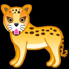 Leopard google emoji