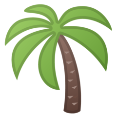 Palm Tree google emoji