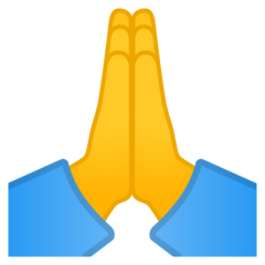 Person With Folded Hands google emoji