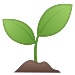Seedling google emoji