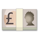 Banknote With Pound Sign lg emoji