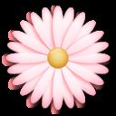 Blossom lg emoji