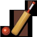 Cricket Bat And Ball lg emoji