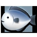 Fish lg emoji