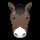 Horse Face lg emoji