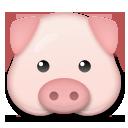 Pig Face lg emoji