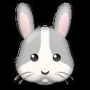 Rabbit Face lg emoji