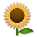 Sunflower lg emoji