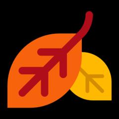 Fallen Leaf microsoft emoji