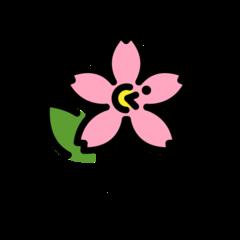 Cherry Blossom openmoji emoji