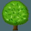 Deciduous Tree samsung emoji