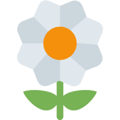 Blossom twitter emoji