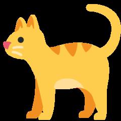 Cat twitter emoji