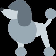 Poodle twitter emoji