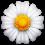 Blossom whatsapp emoji