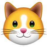 Cat Face whatsapp emoji