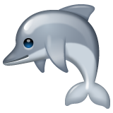 Dolphin whatsapp emoji