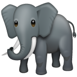 Elephant whatsapp emoji