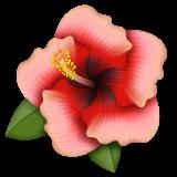 Hibiscus whatsapp emoji