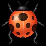 Lady Beetle whatsapp emoji