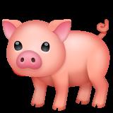 Pig whatsapp emoji