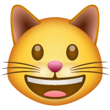 Smiling Cat Face With Open Mouth whatsapp emoji