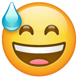 Smiling Face With Open Mouth And Cold Sweat whatsapp emoji
