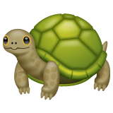 Turtle whatsapp emoji