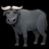 Water Buffalo whatsapp emoji
